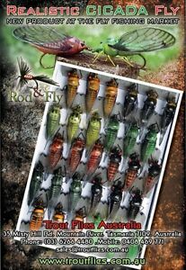 Cicada-Bass-Fly-Fishing-Flies-5-mixed-colours