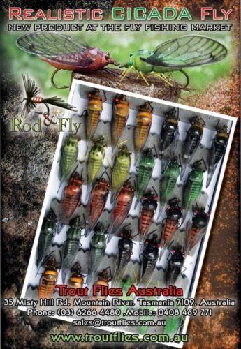 Cicada Bass Fly Fishing Flies 5 mixed colours
