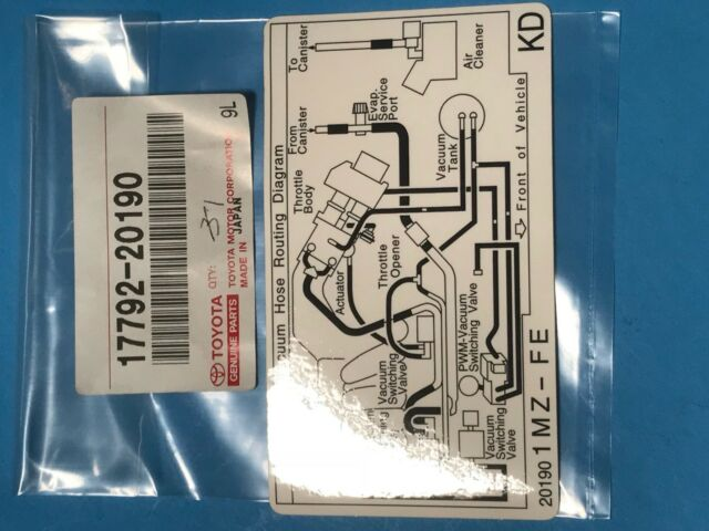 Lexus Toyota Oem 0001 Es300 Labelsvacuum Hose Diagram 1779220190. Genuine Toyota Lexus 1779220190 Plate Engine Vacum Hose Information. Lexus. 1999 Lexus Es 300 Vacuum Diagrams At Scoala.co