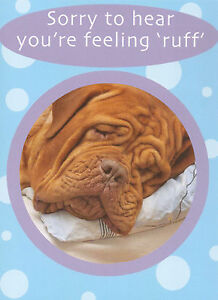 male female get well soon card funny humorous 5 x cards to