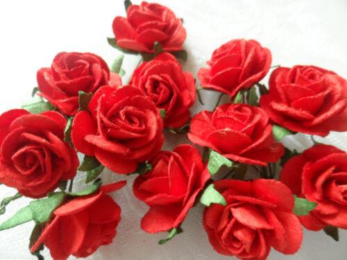Bridesmaid Bride Hair Vine Tiara Roses Sparkly Crystals Prom Party Races