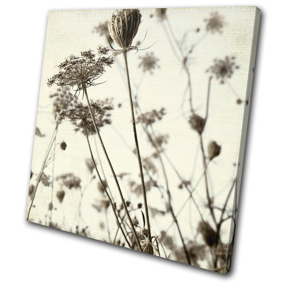 Canvas Art Picture Print Wall P caliente o o caliente Plants Floral Meadow Vintage Shabby Chic f04e7f