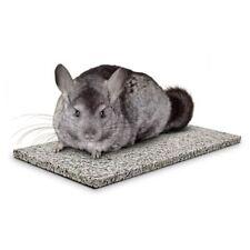 Chinchillas Chin Chiller - Super Pet