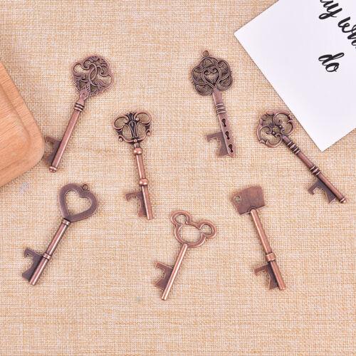 Key Shaped Bottle Opener Keychain Key Ring Beer Bottle Opener Beer OpenZTRSDE