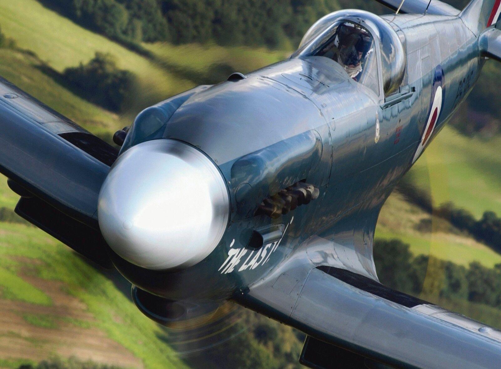 Battle of Britain Memorial Flight Spitfire mk19  Photo Print