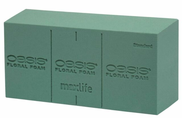 Maxlife Oasis Floral Foam Standard 48 per Case