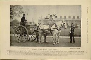 1897-PRINT-FORAGE-CART-ROYAL-SCOTS-GREYS-REGIMENTAL-TRANSPORT