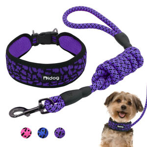 Wide Mesh Dog Collar and Leash Reflective Nylon Walking Collar with Bungee Lead
