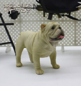 Free-Shipping-1-6-Scale-White-Bulldog-Dog-Model-Animal-for-12-034-Action-Figure-Toy