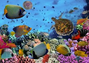 Awesome Tropical Coral Reef Poster Size A4 / A3 Sea Nature Poster Gift #8475