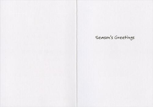 Southern Christmas 12 Days of Christmas 15 Boxed Christmas Cards
