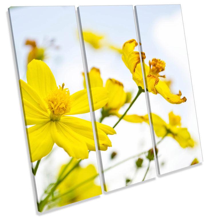 Flor Floral Flores Primavera Cuadrado TREBLE LONA pared arte Foto impresión Cuadrado Primavera 800abc