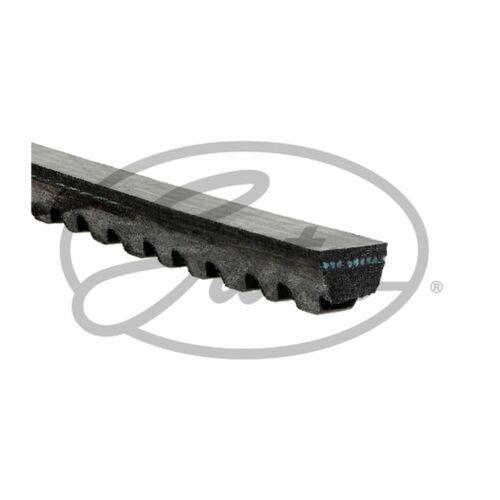 Fits Nissan X-Trail T30 2.2 dCi Genuine Gates Alternator V-Belt
