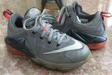 edb6adce80d item 7 Nike Lebron James XII Low Youth Kids  Gray Basketball Shoes Size 5Y   744547-014 -Nike Lebron James XII Low Youth Kids  Gray Basketball Shoes Size  5Y ...