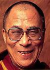 Dalai Lama - Towards A Peaceful World (DVD, 2012)