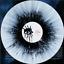 miniatuur 4 - Alice Cooper - Detroit Stories  Black White Splatter 2 Vinyl LP 1000 Worldwide