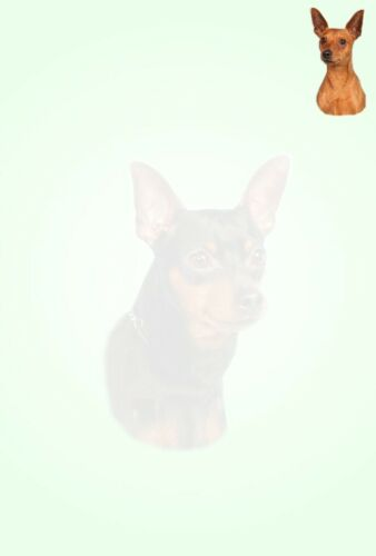Miniature Pinscher 1 Dog Writing Paper With Envelopes Handmade Craft Stationery