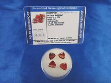 Natural Red Orange Andesine Lot Trillion 6.16 Cts Certified App $400 AGI AN06