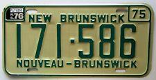 New Brunswick 1976 License Plate SUPERB QUALITY # 171-586