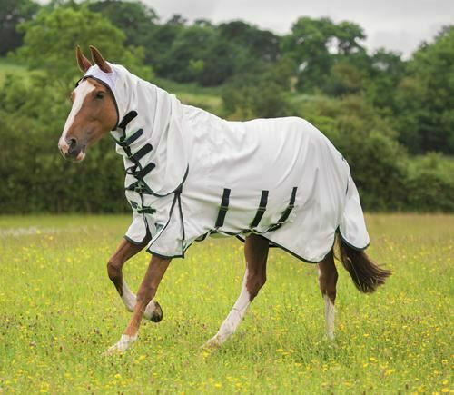 Shires Sweet Itch Combo Fly Rugs White 6ft 3 With Neck Bn