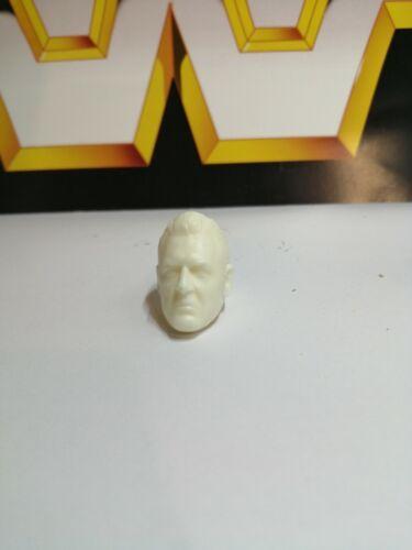 Wwf hasbro WWE Mattel Custom William Regal Tête Wrestling figures