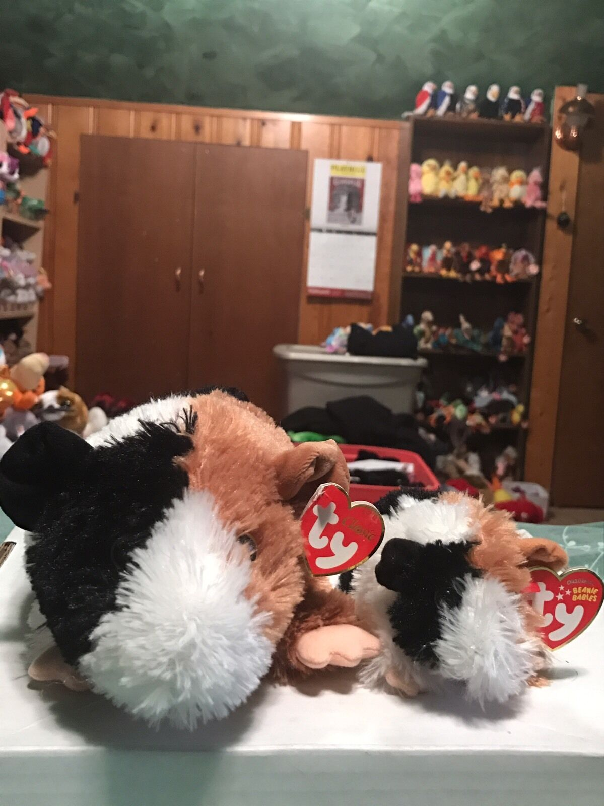 Deal  Ty PATCHES -Multicolord Guinea Pig Beanie Baby & Classic Plush Set  VHTF