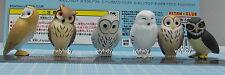 Japan Bird Owl Desk Top Version 6pcs - Kitan Club Gashapon  ..h#2