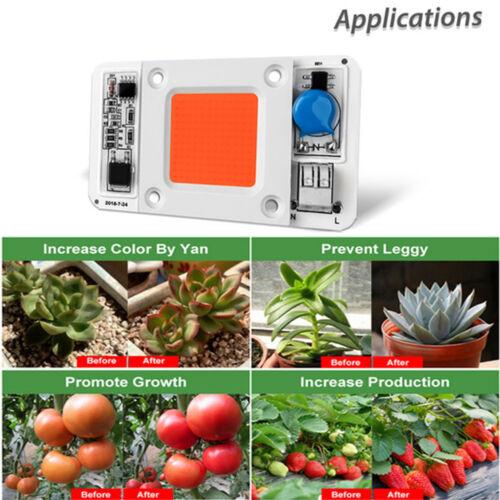 50W COB LED Chip driverless Light 380-840nm Warm Neutral White Blue Red Green
