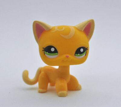 Pet Shop Cat SHORT HAIR child girl boy figure loose cute LPS811