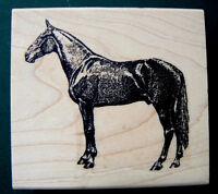 Speed Horse Rubber Stamp Wm 2.5x2.4 P16