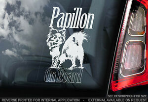 Papillon  Car Window Sticker  Dog Sign V01 - Sticker International, United Kingdom - Papillon  Car Window Sticker  Dog Sign V01 - Sticker International, United Kingdom