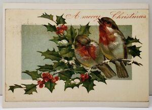 Merry-Christmas-Birds-Holly-Berry-6x4-Reproduction-of-an-1874-1895-Postcard-E10