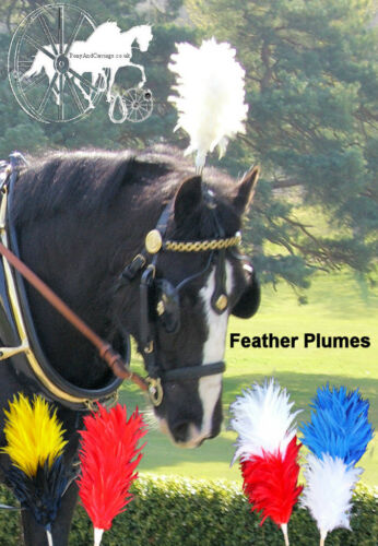 Egret Feather Carriage Driving Bridle Head Piece Colour Plumes Wedding Funerals