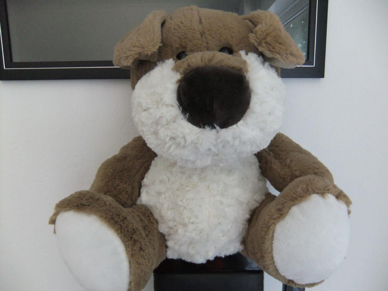 14  CARD FACTORY PUPPY DOG CREAM GINGER BROWN CREAM SOFT CUDDLY TOY TEDDY BEAR