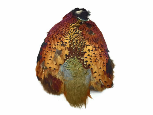 Complete Natural Ringneck Pheasant Skin Pelt Without Wing And Tails 1 Piece