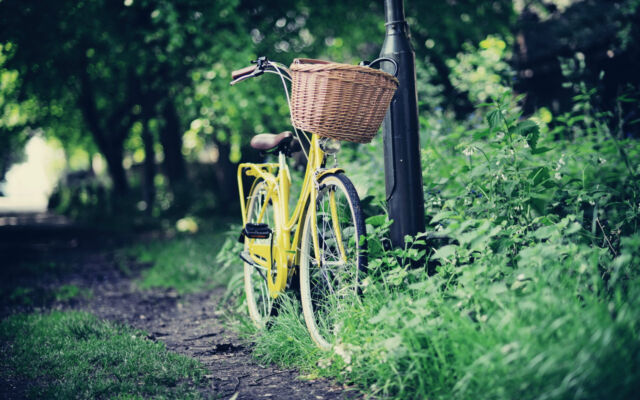 Framed Print - Yellow Bicycle Leaning Against a Lamp Post (Push Bike Picture)