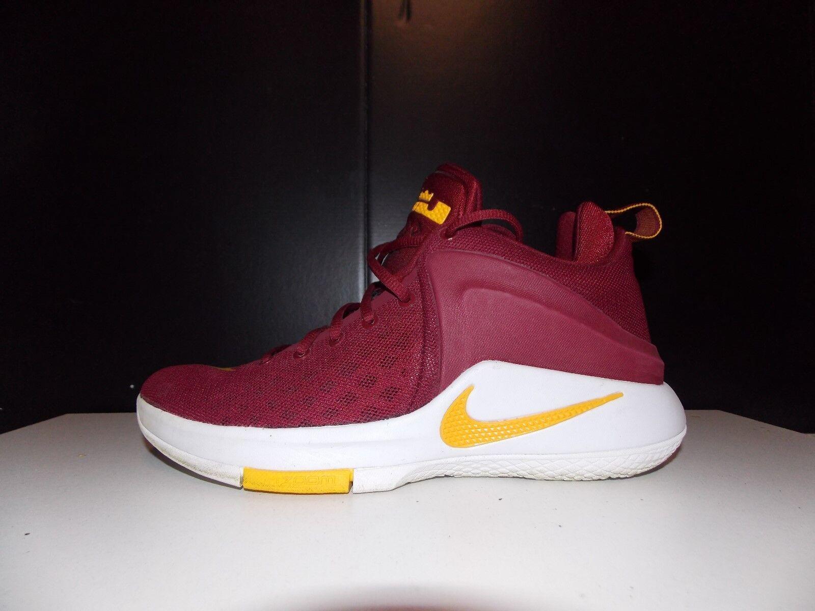 Nike Nike Nike Lebron Zoom Witness Gr 42 us 8,5 38f20e