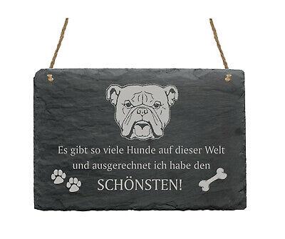 Schiefertafel « Bulldogge Kopf - SchÖnster Hund » Spruch Hunde Dekoration Deko ZuverläSsige Leistung
