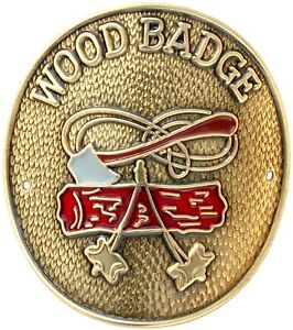 BOY-SCOUTS-OF-AMERICA-WOOD-BADGE-HIKING-STAFF-STICK-SHIELD-MEDALLION-BSA-NEW