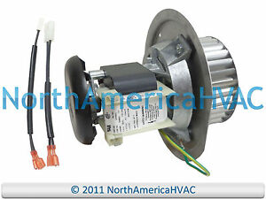 carrier bryant payne furnace exhaust inducer motor assembly 318984 rh ebay com Bryant Inducer Draft Motor Carrier Bryant Inducer Motor Parts
