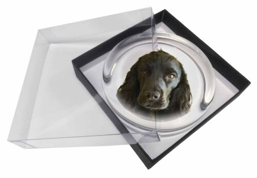 AD-SC8PW Black Cocker Spaniel Dog Glass Paperweight in Gift Box Christmas Prese