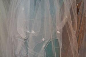 Joyce Jackson White Single Veil with Daisies Original Price RRP £130