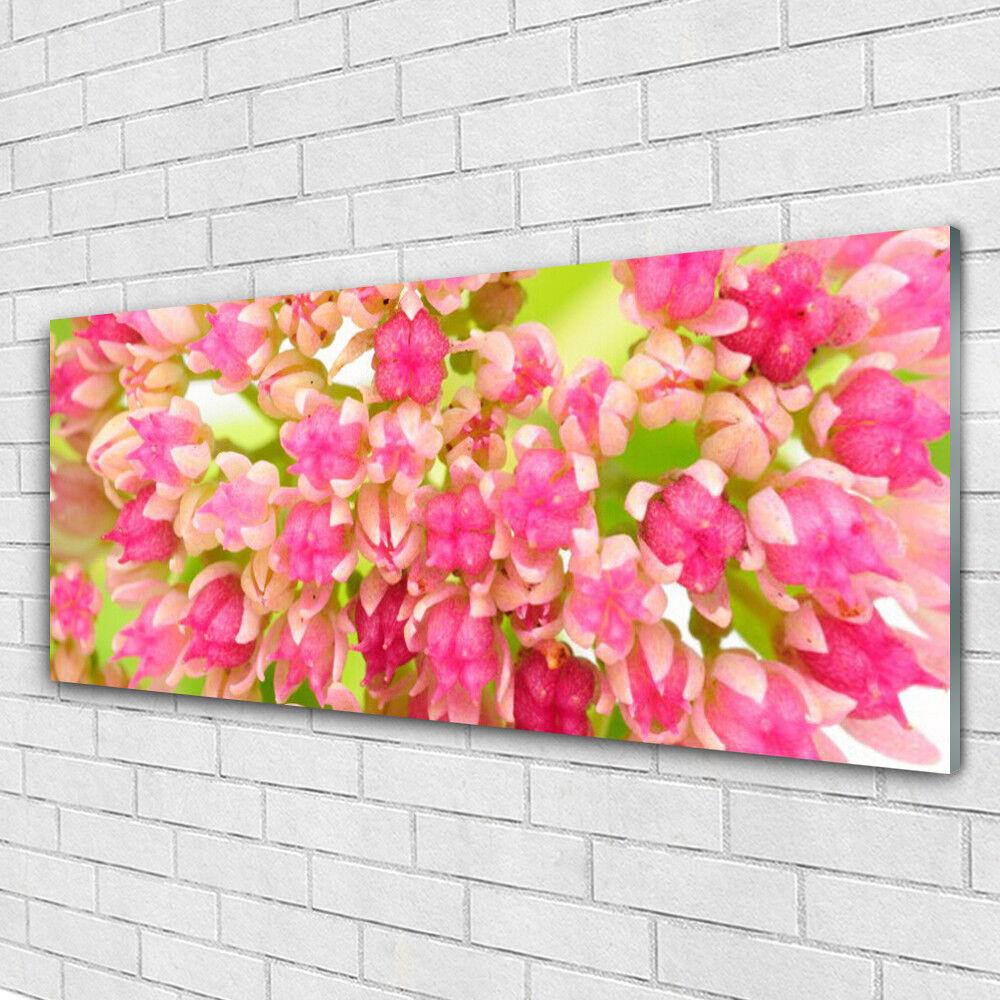 Verre Imprimer Wall Art Image 125x50 Photo Fleur Fleurs