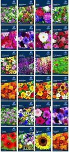 NEW SEASON 2021 GARDEN FLOWERS SEEDS F.U.M. TOOLS FUM