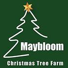 maybloomchristmastreefarm