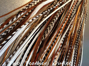 Lot-40-Grizzly-Solid-Feathers-Hair-Extensions-saddle-long-skinny-real-Natural-NB