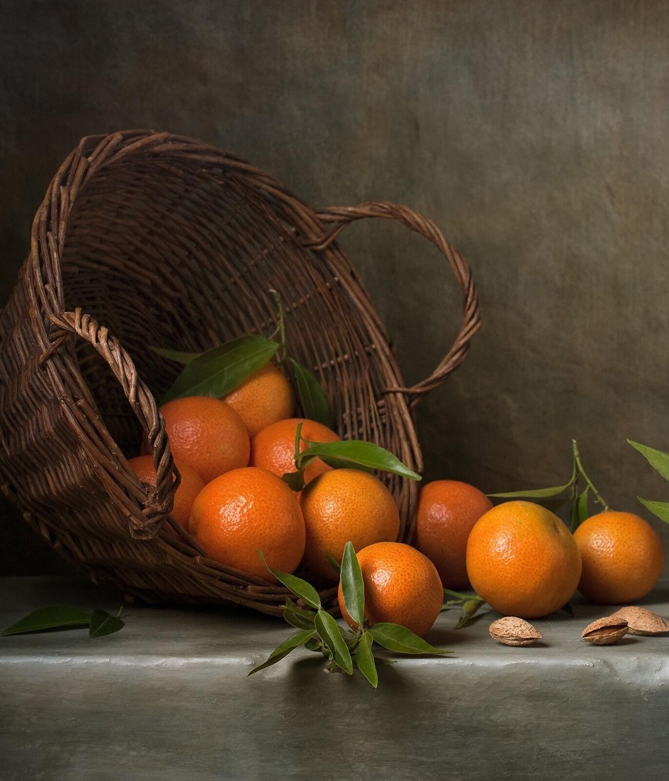 Cocina de de Cocina vidrio templado de ESG salpicaduras de pared trasera Bodegón Naranja Prizma SB0322 e721dd