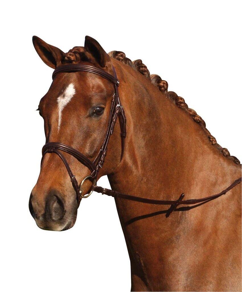 Catago ledertrense Braun-pony-cuero frenillo incluyendo incluyendo incluyendo riendas caballos  barato y de moda