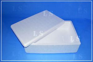 Scatola-Polistirolo-20LT-cm57x37x15-contenitore-termico-alimenti-salumi-formaggi