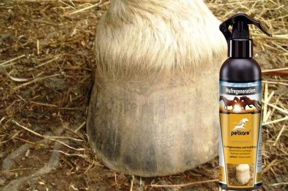 Hufregeneration - Hufpflege für das Pferd - Huföl   1 Liter